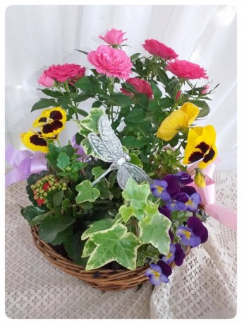 Florist's Choice Planted Basket