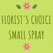 Florist's Choice Small Funeral Spray