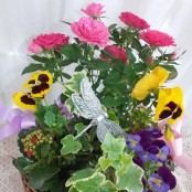 Florist's Choice Planted Basket